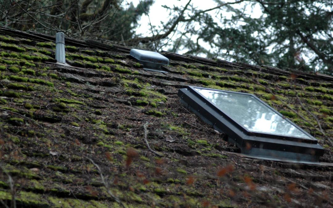 roof care tips hoa